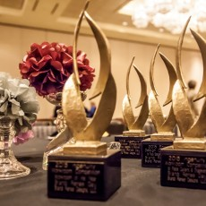 Four Awards from 2015